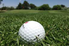 golf_230